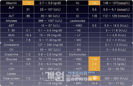 [그림 10] 보리 혈액검사 결과
